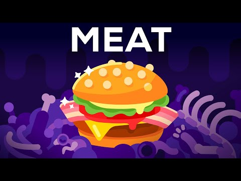 Why meat is the best worst thing in the world 🍔