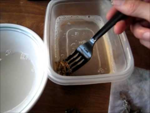 How to polish gold filled jewelry remove the tarnish easily with tarn-x