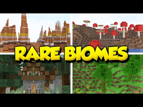 Top 5 best rare biome seeds for minecraft 1.15.2! (minecraft java edition seeds)